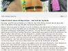 Artikel Freie Presse 20.10.14